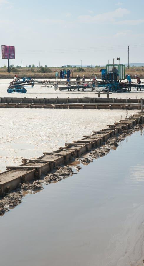 Harvesting salt in the Bulgarian Black Sea Coast stock images