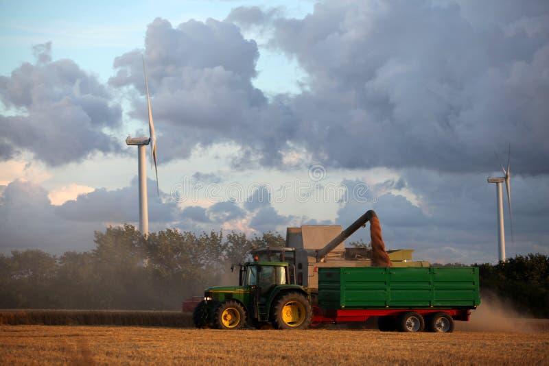 Harvesting. stock photography