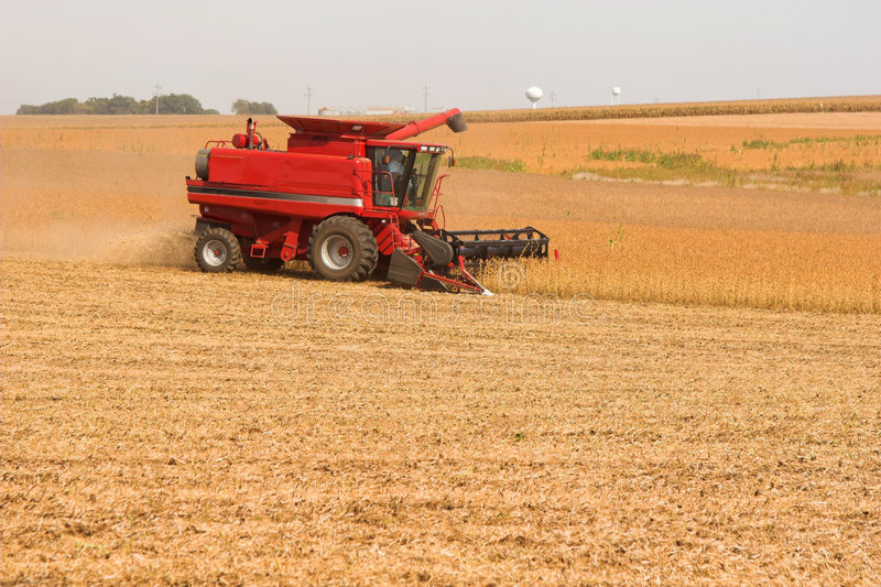 Download Harvesting Soybeans stock image. Image of tractor, iowa - 6701771