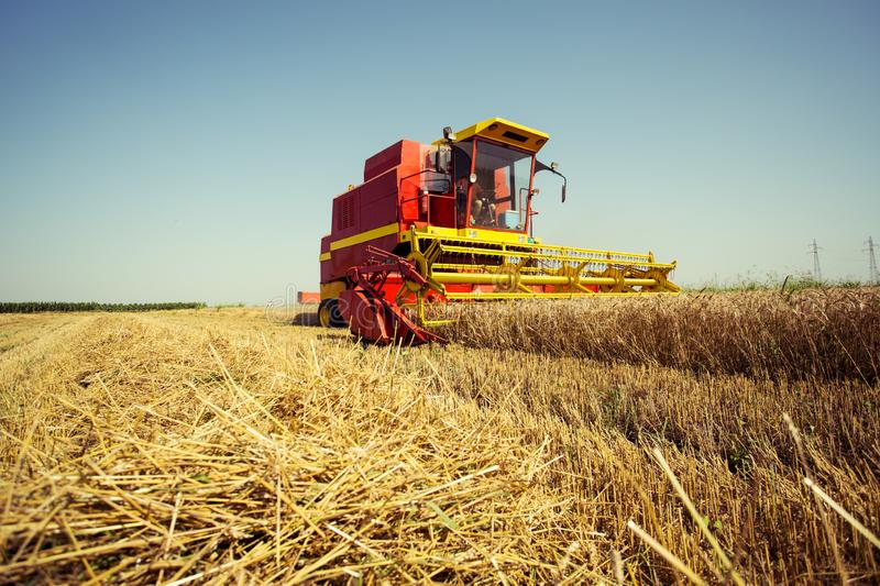 Harvesting wheat harvester on a sunny summer day. On the blue sky stock images