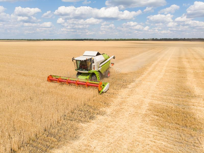 Harvesting of wheat in summer. Combine harvester agricultural machine collecting golden ripe wheat on the field. View. From above stock photo
