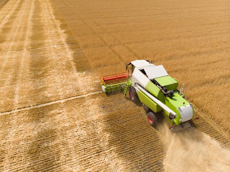 Harvesting of wheat in summer. Combine harvester agricultural machine collecting golden ripe wheat on the field. View. From above stock photography