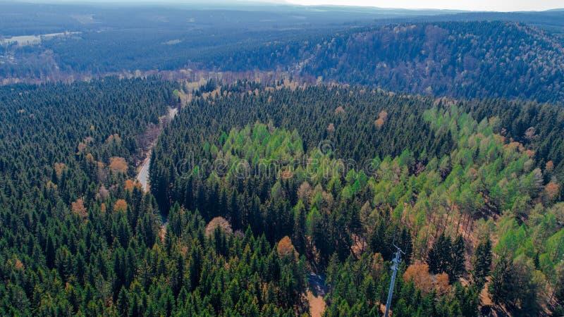 Harz góry Niemcy obrazy stock