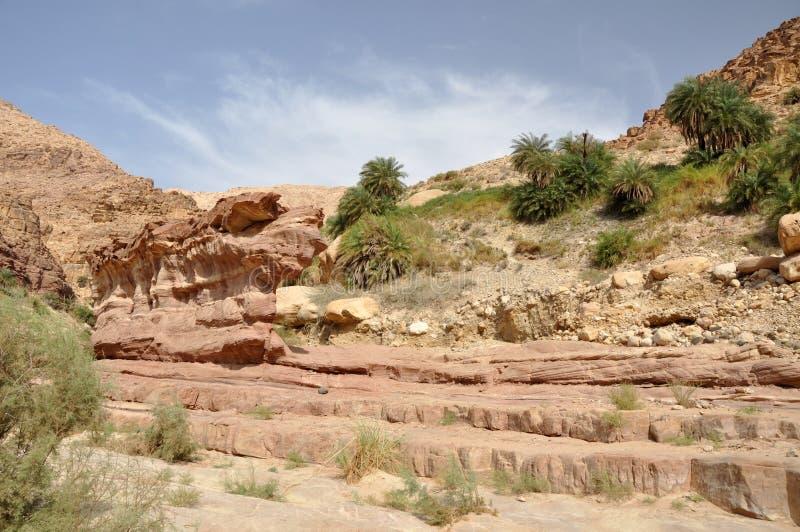 Hasa dei wadi fotografie stock