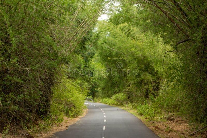 Beautiful Ghat road along the mountain range of Talamalai Reserve Forest, Hasanur, Tamil Nadu - Karnataka State border, India. Hasanur is a town in Talamalai royalty free stock photography