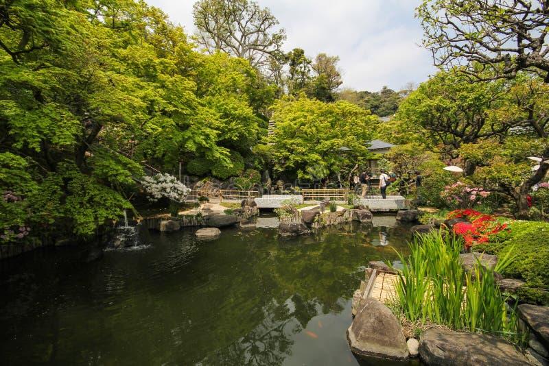 Hasederatempel, de beroemde tempel in de stad van Kamakura, Japan stock foto's