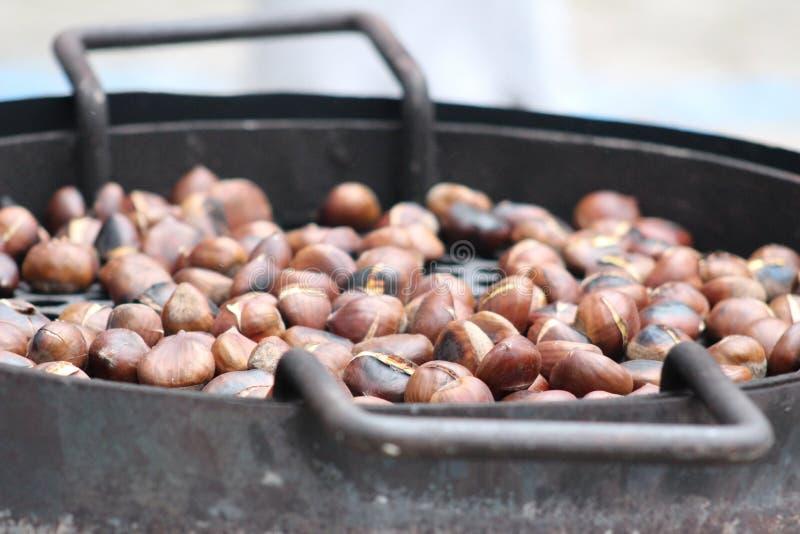 Haselnuss, Nahrung, Bestandteil, Nüsse u. Samen