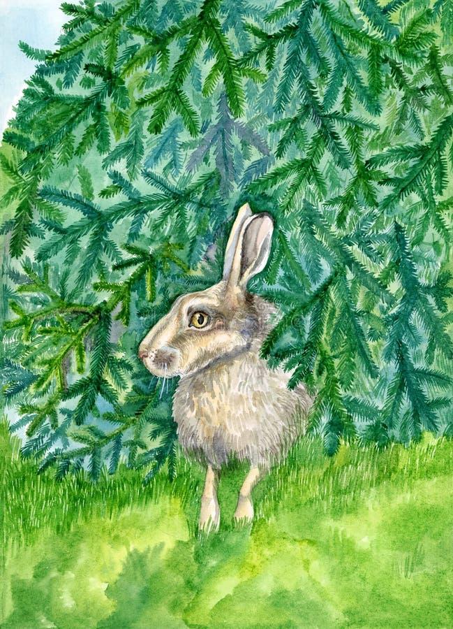Hasen, die unter der Tannen-Baum-Aquarell-Tier-Illustration handgemalt sich verstecken vektor abbildung