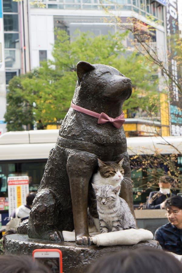 Hashiko-Statue mit zwei Katzen in Shibuya stockfotos