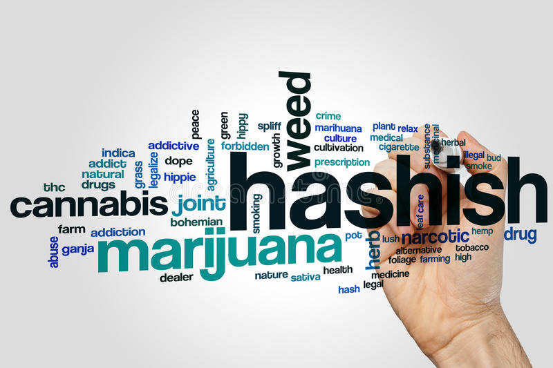 Hashish word cloud. Concept on grey background royalty free stock image