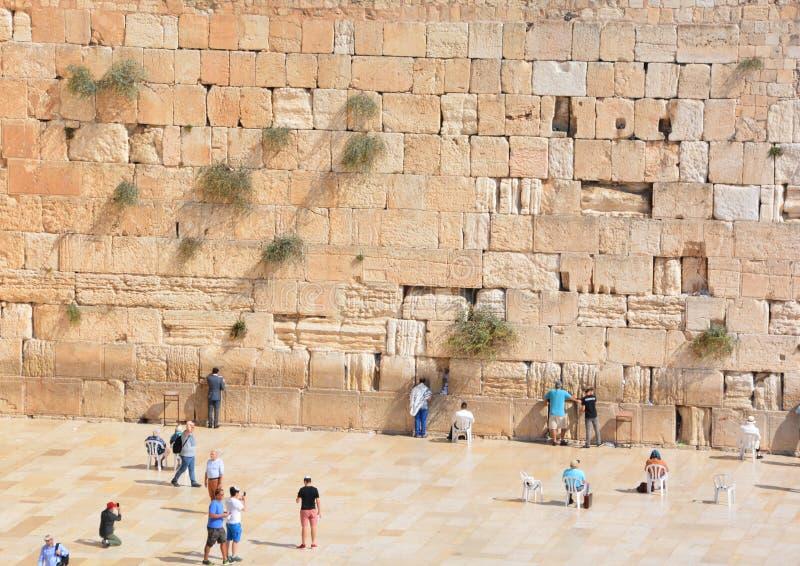 Hasidic judaicos rezam fotos de stock