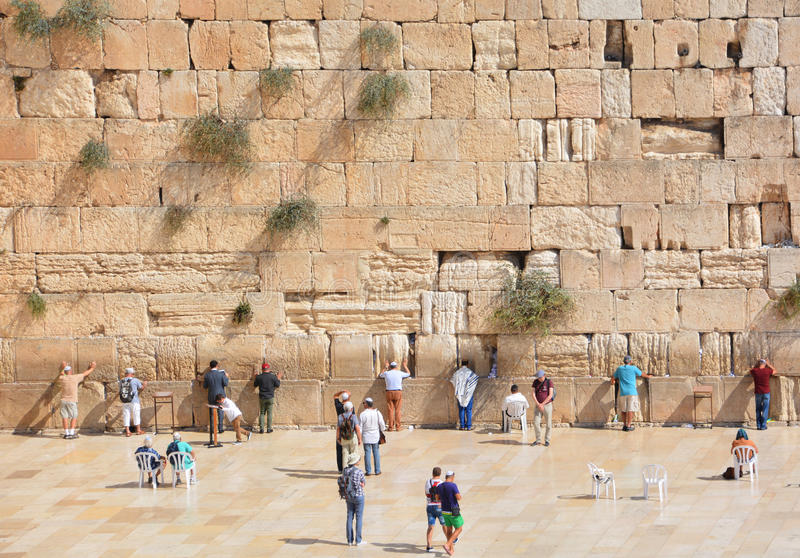 Hasidic judaicos rezam fotografia de stock royalty free