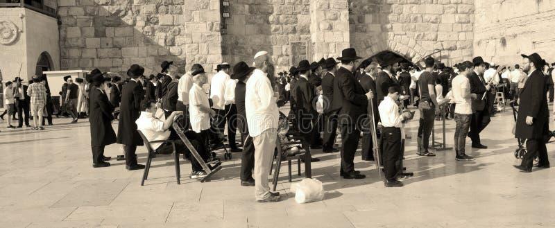 Hasidic judaicos rezam imagem de stock