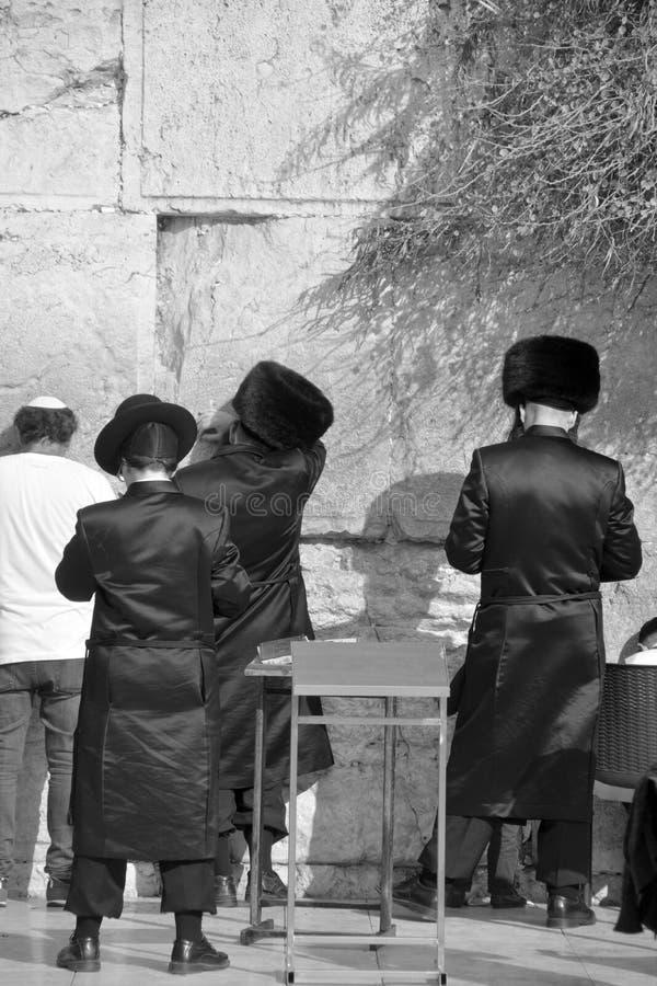 Hasidic judaicos rezam a parede ocidental imagem de stock