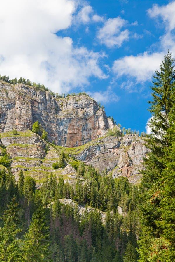 Hasmas Mountains royalty free stock photo