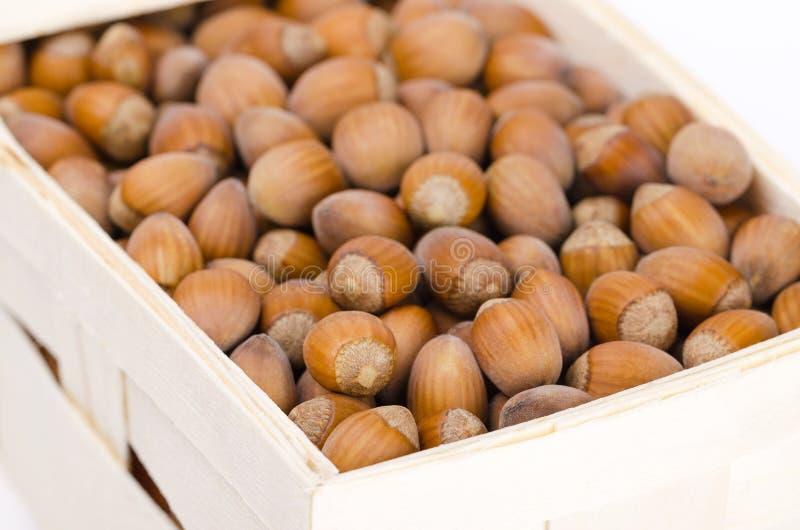 Hasselnötter i en vide- korg arkivfoton