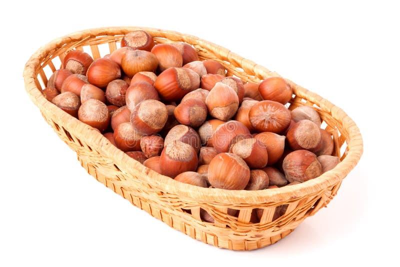Hasselnötter i en vide- korg som isoleras på vit bakgrund royaltyfri bild