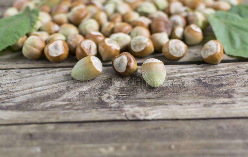 Hasselnötter på trätabellen, selektiv fokus royaltyfri foto