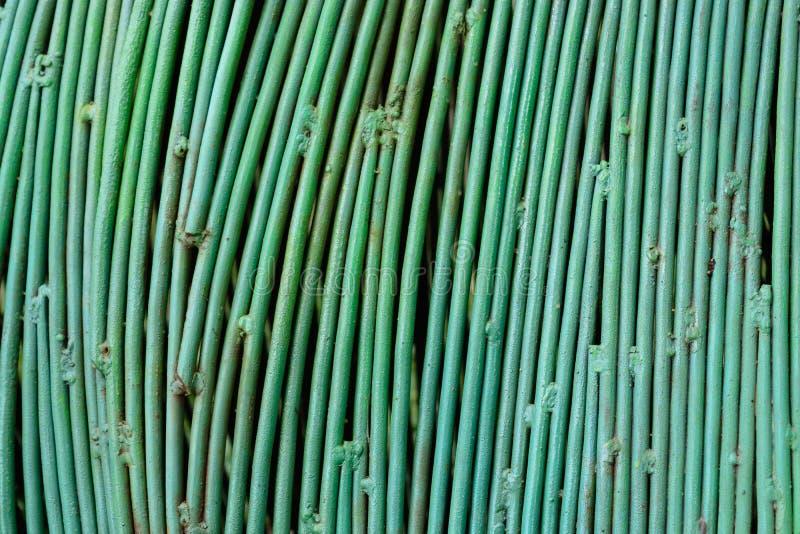 Hastes ou barras de aço usadas para reforçar o concreto Cor verde da decoração fotos de stock