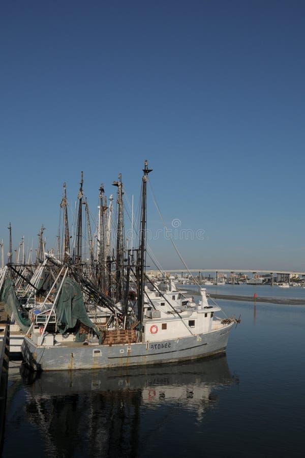 hastig Fort Myers shrimping vertical royaltyfria foton
