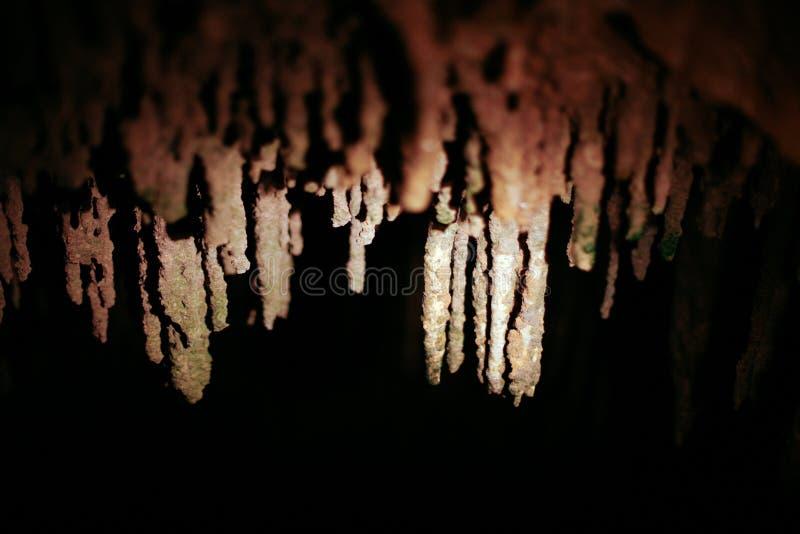 Hastings grottor fotografering för bildbyråer