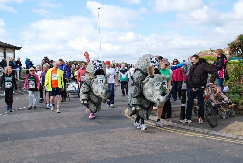 Hastings-Halbmarathon, 2014 stockfotos