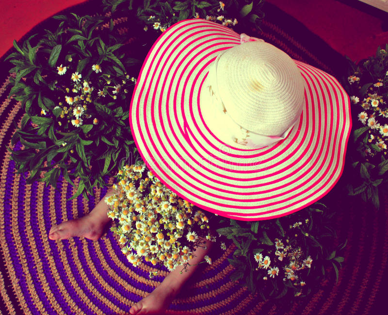 Hat, child, flowers stock photography