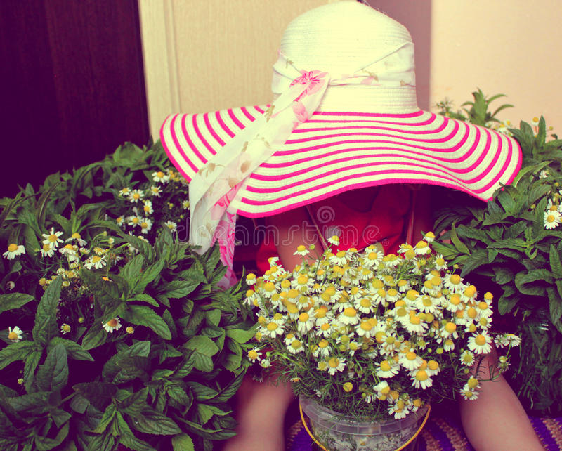 Hat, child, flowers royalty free stock photography