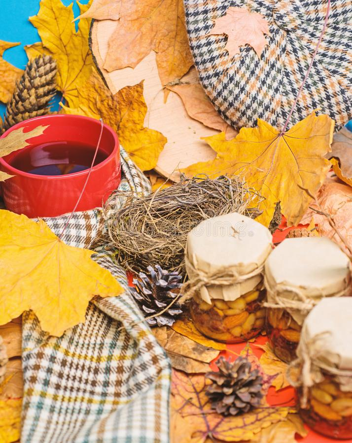 Hat scarf and honey natural sweets in jars near mug of tea background covered fallen leaves. Natural homemade treats stock image
