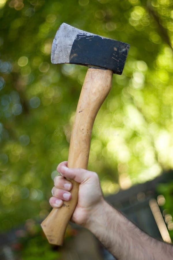 Download Hatchet stock image. Image of hack, cutter, steel, face - 6727653
