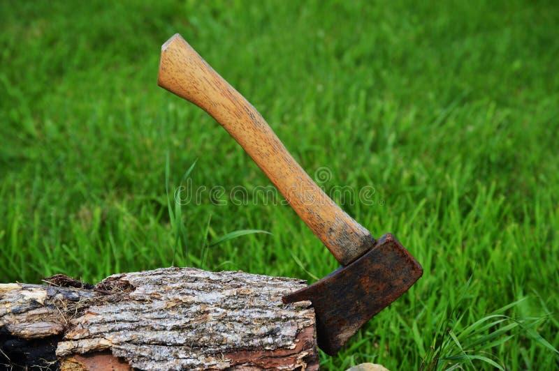 Hatchet in wood royalty free stock photo