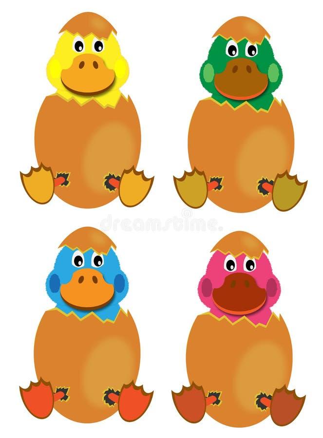 Free Hatching Baby Ducks Stock Photography - 12224932