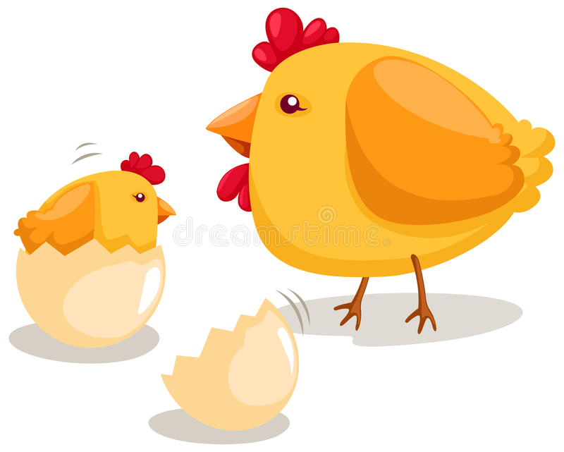 Hatching chicken. Illustration of isolated hatching chicken on white background vector illustration