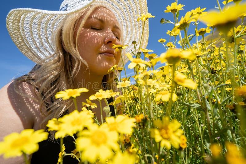 Hatt för sugrör för blond kvinna som bärande vit luktar ett fält av gula vildblommor Begrepp för vårallergilättnad royaltyfri fotografi