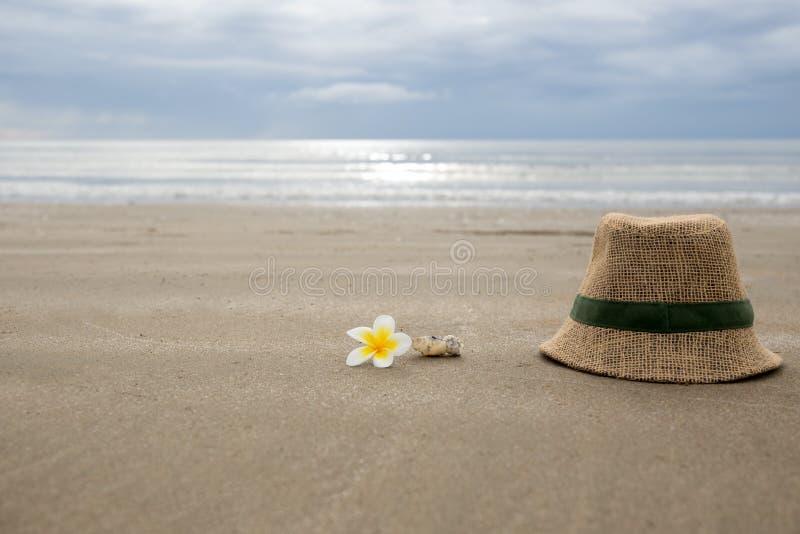 Hatten med frangipaniblomman och havet beskjuter på stranden arkivfoton