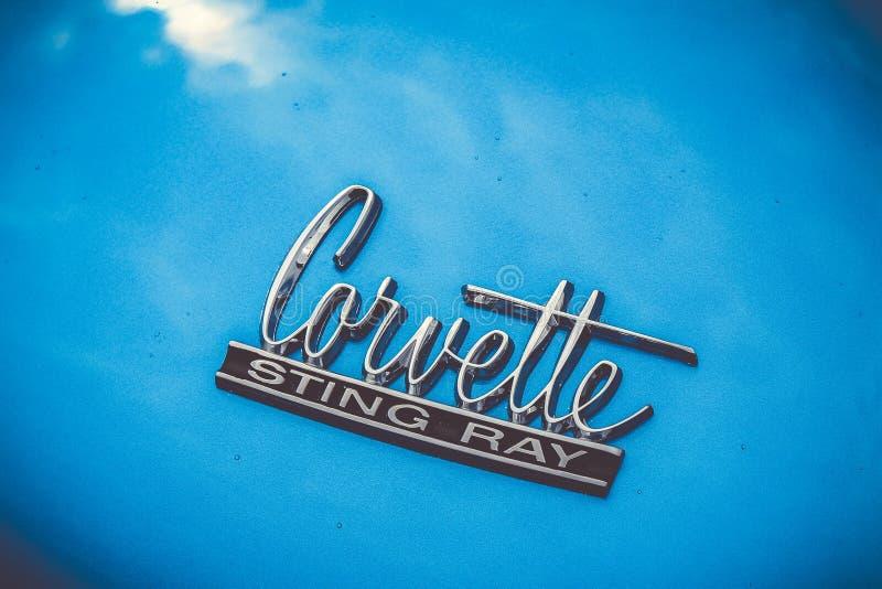 Haube von einer blauen Korvette 1967 lizenzfreies stockbild
