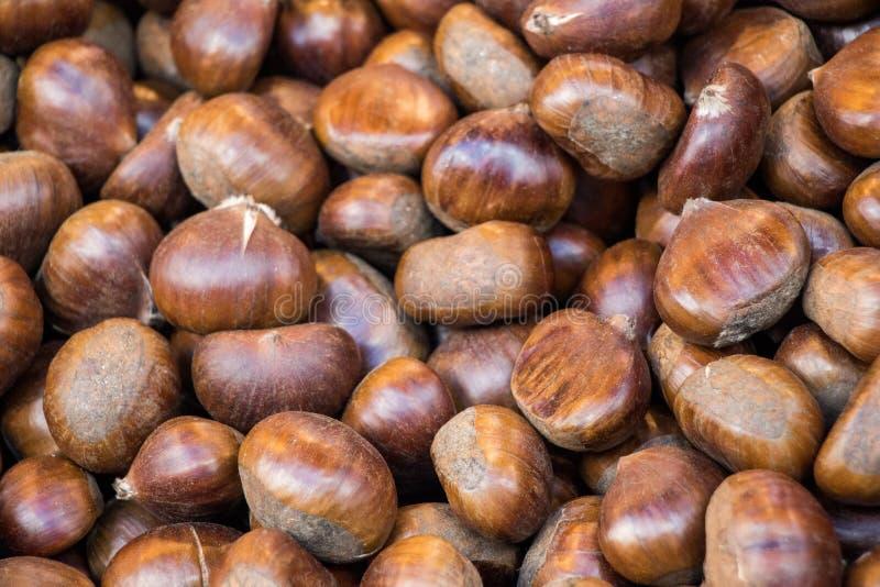 Haufen der Kastanie für Herbstlebensmittelhintergrund stockfotografie