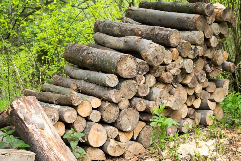 Haufen des Brennholzes stockbild