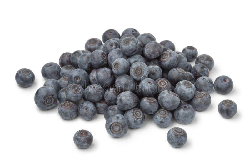 Haufen von frischen blauen Beeren stockfotos