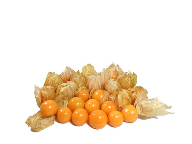 Haufen von vibrierenden gelben reifen Kap-Stachelbeeren mit und ohne Kelch, lokalisiert auf weißem Hintergrund lizenzfreie stockbilder
