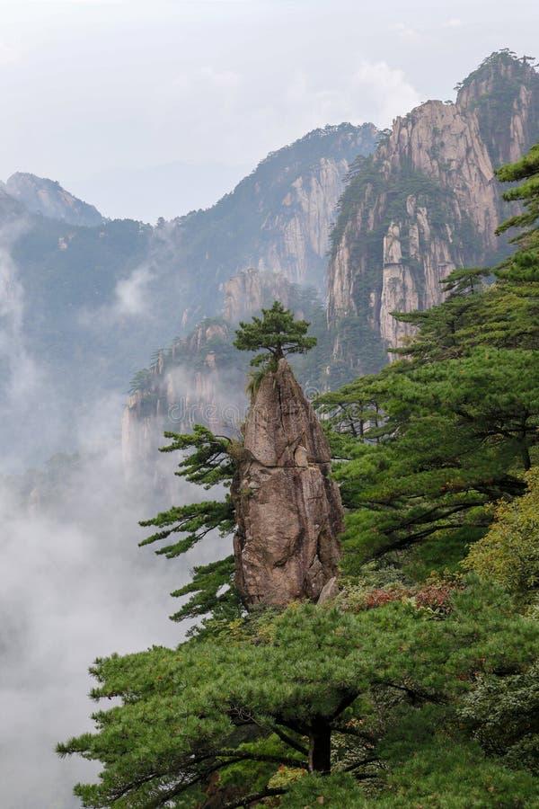 Haungshan nationalpark, Kina royaltyfri fotografi