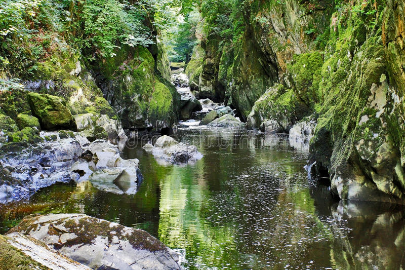 Haunted Fairy Glen Betws-y-coed. Tranquil Fairy Glen, Betws-y-coed, Snodonia National Park, North Wales royalty free stock images