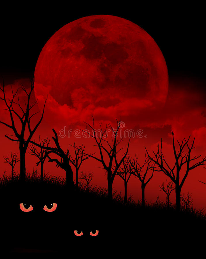 Haunted Forest. A scary night in the woods with evil red eyes and a large moon royalty free stock images