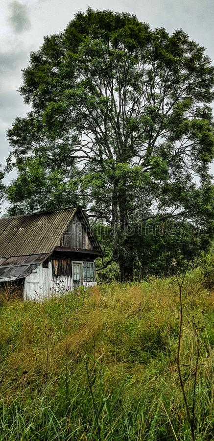 Haunted house stock photos
