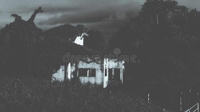 Haunted House. Haunted House Scene. Abandon in forest area have many plant grow over the construction stock photo