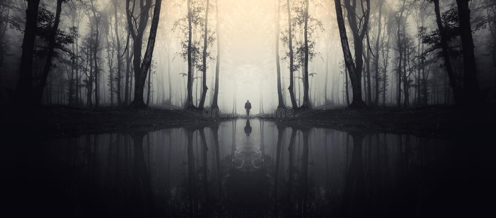 Haunted lake in forest with man silhouette. Man on lake edge in dark mysterious haunted symmetrical forest with fog royalty free stock photo