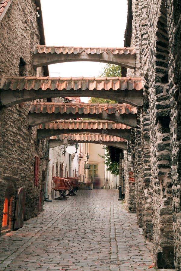 Haunted streets of Tallinn. Landscape stock image