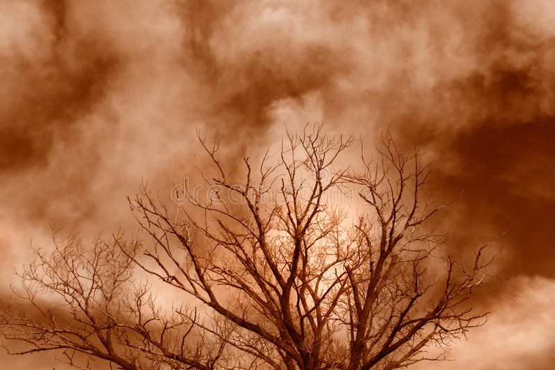 Haunted Tree. An old gnarled tree and clouds in dark sepia stock photo