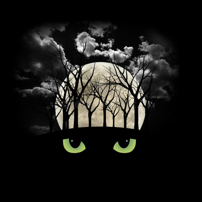Free Haunting Halloween Forest Royalty Free Stock Image - 11066216