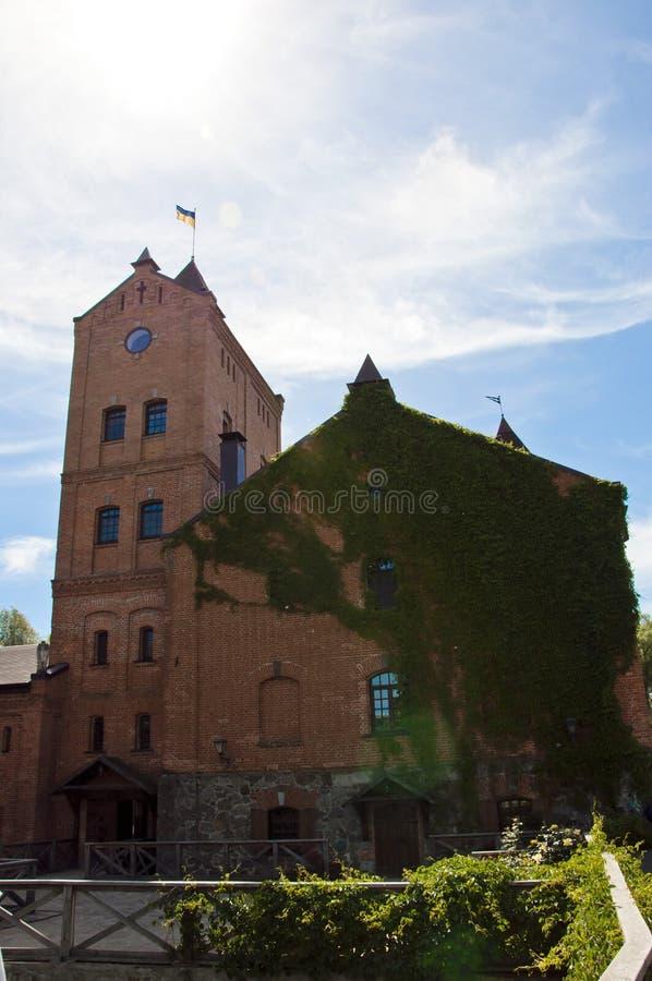 Haus Altes Haus mit Wein auf Ziegelwand bei Sonnenlicht Architektur der Ukraine, Gebiet Zhitomir, Radomyshl stockfotos